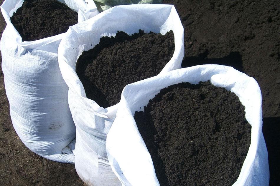 Что выбрать для участка – почвогрунт или чернозем картинка